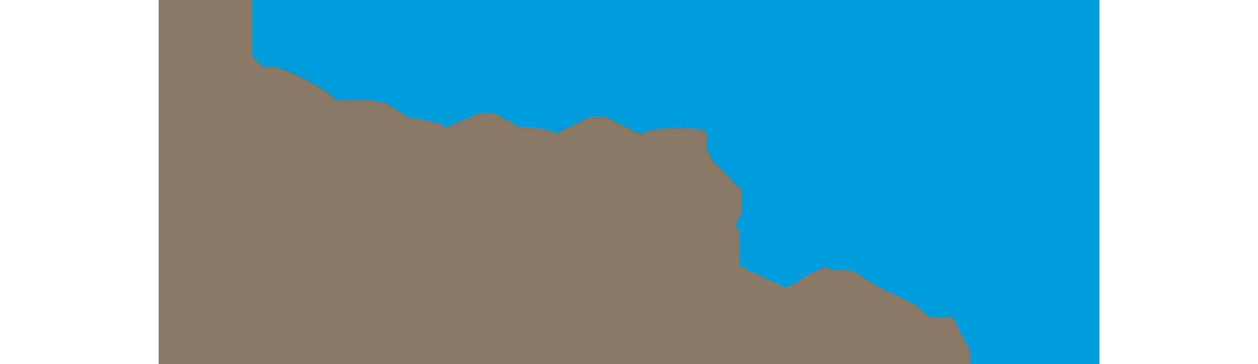 PebbleTec-logo-v3